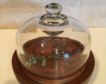 Cheese Dome / Vintage Glass & Wood Cheese Server w/Dome by GOODWOOD