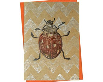Insect Ladybird Bug Entomology Natural History Blank Card - Free Postage