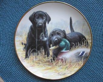 "Adorable Decorative Porcelain Platter ""Beginners' Luck"""