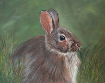 A Wild Hare Greeting Card