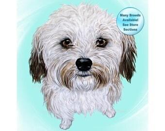 Havanese, Havanese Art, Havanese Dog, Havanese Print, Havanese Portrait, Pet Portrait, Havanese Painting, White Dog Art, Dog Breeds