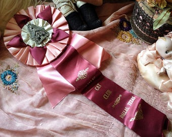 Vintage pink cat award show ribbon satin ribbon rosette cat prize vintage rhinestone shoe clip Dallas Texas Cat Club