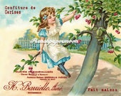 Vintage French Digital Cherry Girl, Picking Cherries, Farmhouse, French Pillow Image Graphic Transfer, Large Size