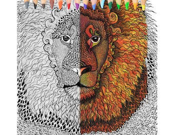 Coloring Book,Lion, coloring page
