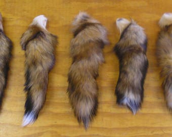 5 Red Fox Tails