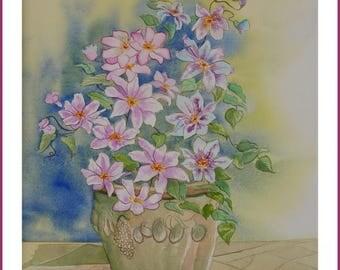 Watercolor - CLEMATIS