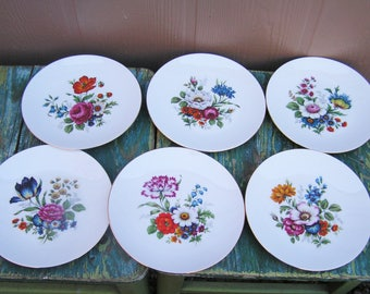 Vintage Set of 6 Bavaria Bavarian Germany Plates with Spring Flowers Floral Pattern Bareuther Waldsassen Gold Rim Floral Plate Set