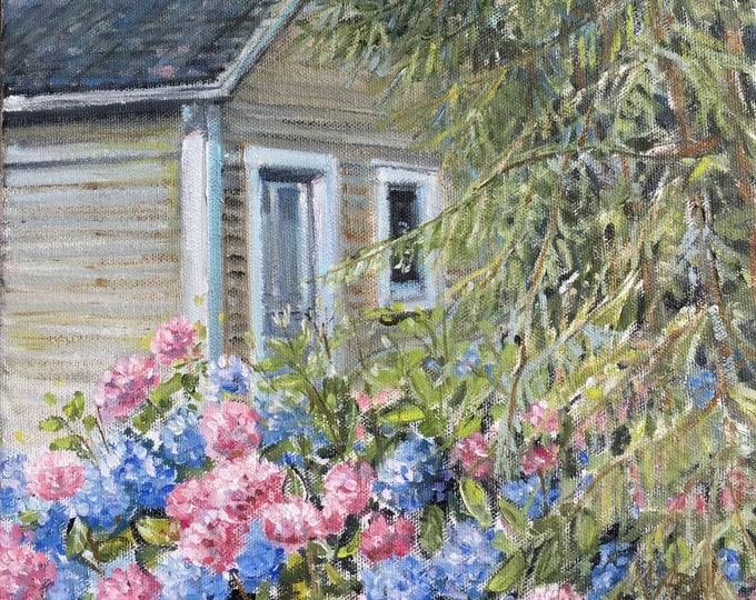 Hydrangeas behind Summer Cottage