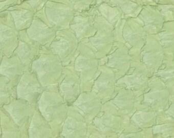 authentic Carp exotic fish skin leather Vintage Soft Mint semi-glazed hide DE-59606 (Sec. 1,Shelf 10,D)