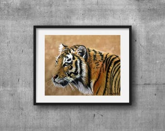 Tiger, Tiger cub, PRINT, Coloured Pencil Art, Tiger painting, Home decor, Tiger drawing, Art, Animal prints, Wildlife art, FREE Shipping