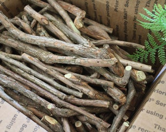 Box Full-Blueberry Wood Sticks /Mixed Size Crafting Sticks / Hardwood Crafting Sticks/ Fruit Wood Sticks / Branches