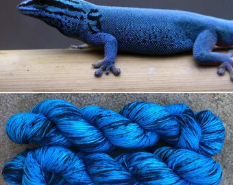 Electric Blue Day Gecko, speckled Donegal sock yarn