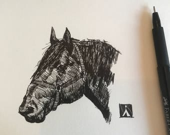 Original Pen Sketch of Draft Horse Head