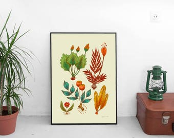 Imagined Plants Collection, Botanical Print