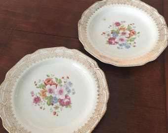 Set of Two  Floral Dinner Plates by Stetson.