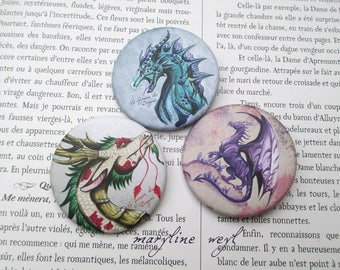 set of 3 badges pins pins dragon