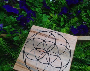 Ambrosia Maple Seed of Life Crystal Grid
