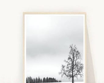 Minimalist Print, Tree Print, Winter Art Print, Wall Art Prints, Printable Art,  Wall Art, Instant Download, Home Decor, Wall Decor