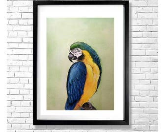 DO I KNOW YOU - Blue and Yellow Macaw Ara Parrot Bird Watercolor Painting Art Print Illustration