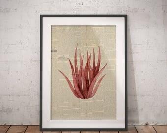 Botanical Plant Art | Pink Plant Print, Newspaper Print, Nursery Plant Art, Pink Plant Wall Art, Plant Painting Print, Plant Paint Print