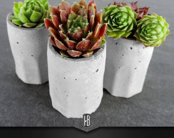 """1x """"PlantShot small"""" in concrete with succulents"""