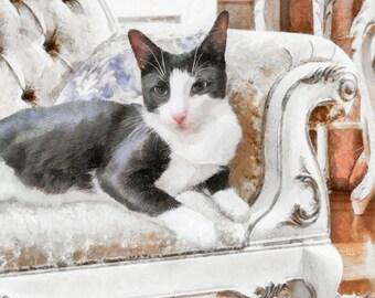 CAT Portrait, Custom cat portrait, Pet Portrait, Cat Painting, Cat Memorial, Digital Painting from photo, Free Shipping!