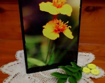 Yellow Flower Regular Card