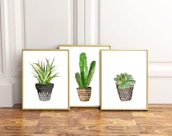 Cactus wall art Etsy CA