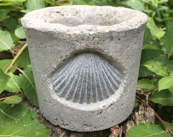 Hypertufa Shell Planter