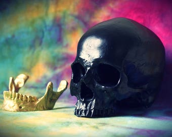 Hand Painted Matte Black & Gold Realistic Faux Human Skull Replica with Removable Jaw
