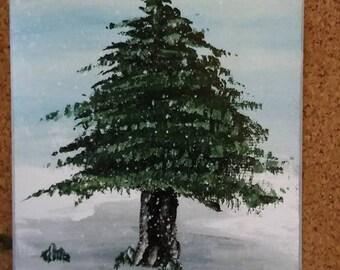 Evergreen Tree 2 (print)