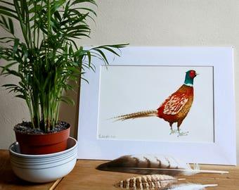 Pheasant Giclée Print