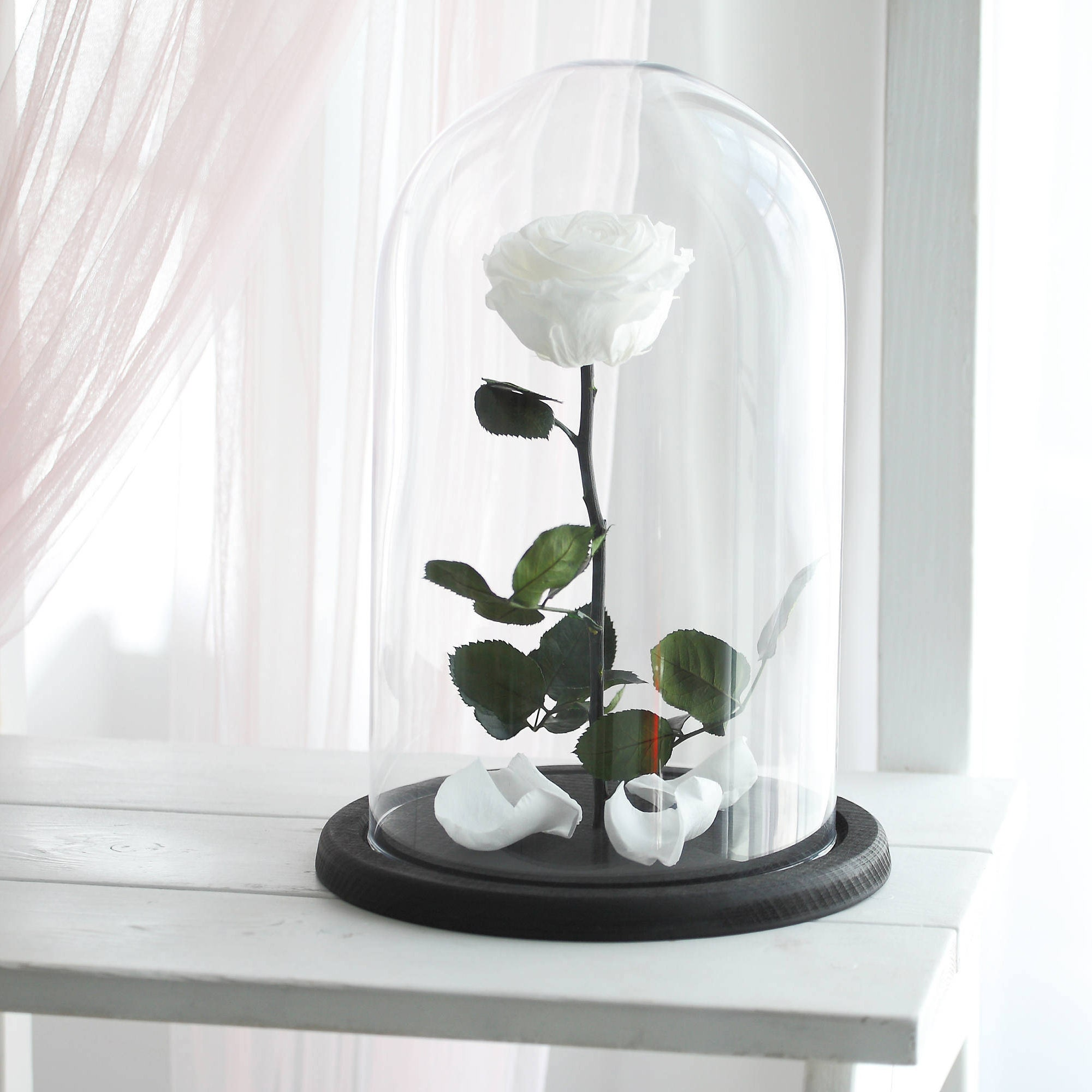 beauty and the beast rose large forever white rose. Black Bedroom Furniture Sets. Home Design Ideas