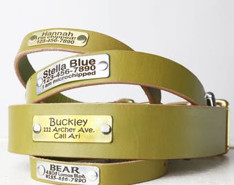 Personalized Engraved Green Leather Dog Collar -- Classic Belt Buckle Style