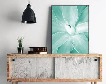 Succulents print botanical prints, plant photo, botanical art, teal decor, botanical home decor, large wall print, digital download