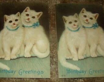 Cute Vintage Embossed Cat Postcard