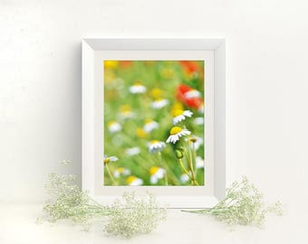 Meadow stock photography, Digital background, Green wall picture, wild flowers photo, commercial use photo, nursery picture, A3 print, decor