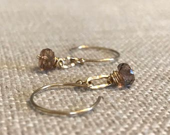 Faceted Andalucite with Hammered Link Earring