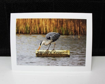 Any occasion photo card - Heron doing some private fishing :)