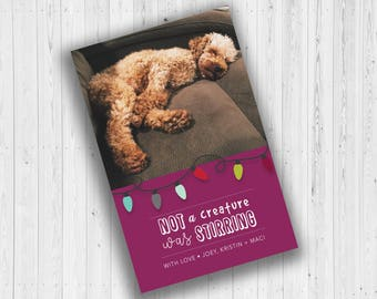 Not a Creature was Stirring Holiday Card
