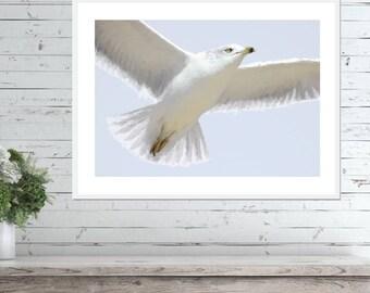 Seagull Art Print, PASTEL ART PRINT, Digital Download, Printable Art, Pastel Wall Art, Coastal Decor, Coastal Wall Art, Seagull Download