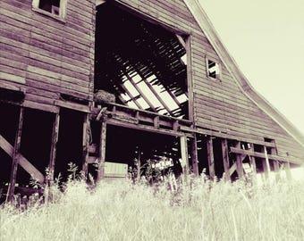 Abandoned Barn, Drafty, Farm, Farmstead, Old, Rustic