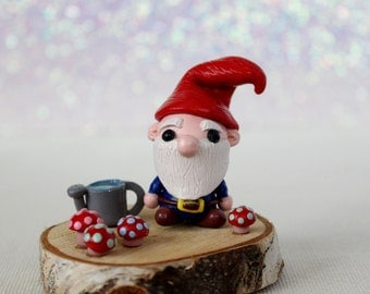 Larry the Gnome