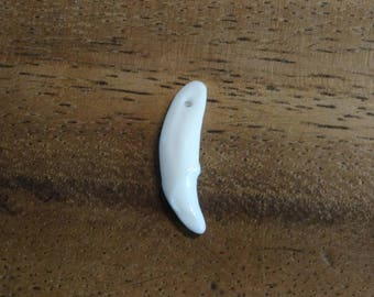 Drilled coyote tooth +/-30mm