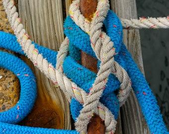 Tied Up in Wellfleet Harbor