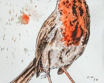 English Robin Original Painting - Framed Watercolour Artwork