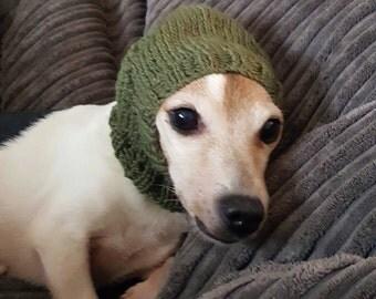 Dog in Hood