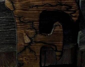 lichtenberg/fractal wood burning