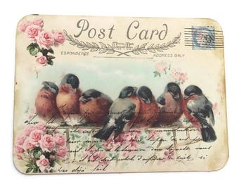 Bird Note Cards, Blank Note Cards, French Vintage Post Card, Pink Roses Note Cards, Bridal Shower,High Tea Party,Birthday, Bird Lover