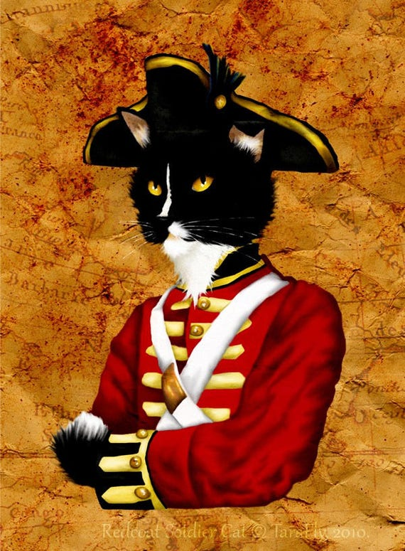 Redcoat British Soldier Cat Fine Art Print
